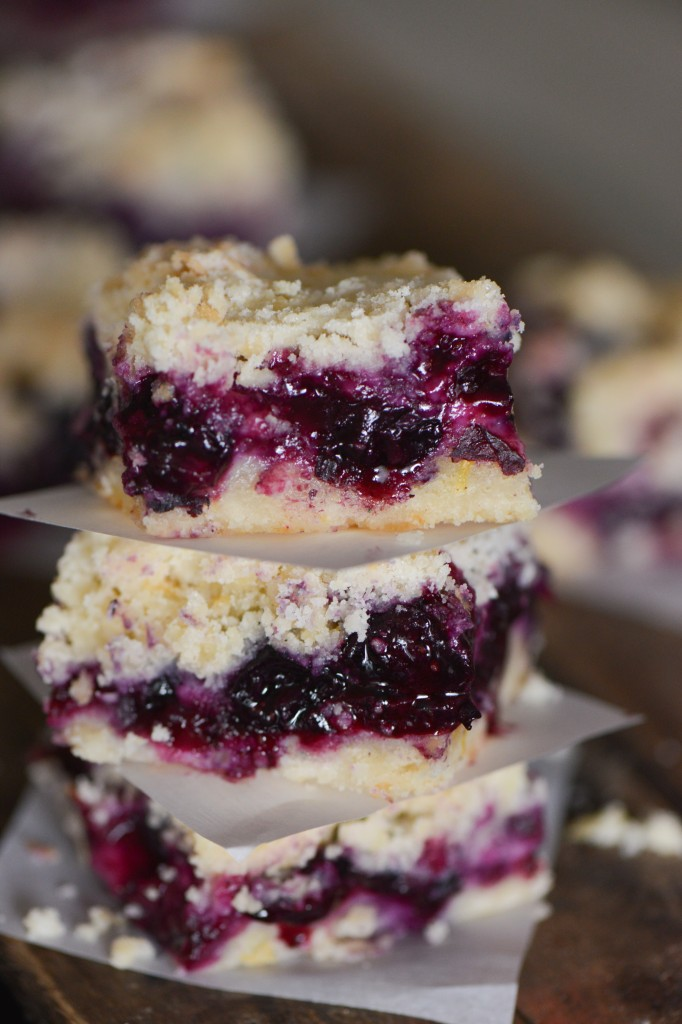 blueberry bars-3547