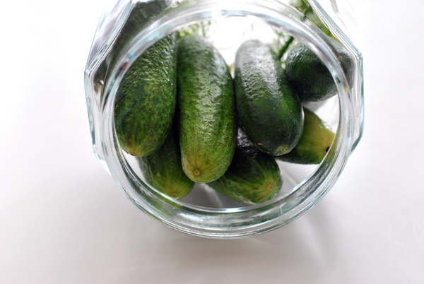 Polish Pickles